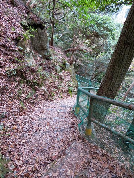 定光寺川沿いの自然歩道(2018年11月18日) - 32
