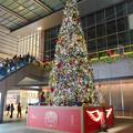 Photos: ゲートタワーのクリスマス・イルミネーション 2018 No - 4
