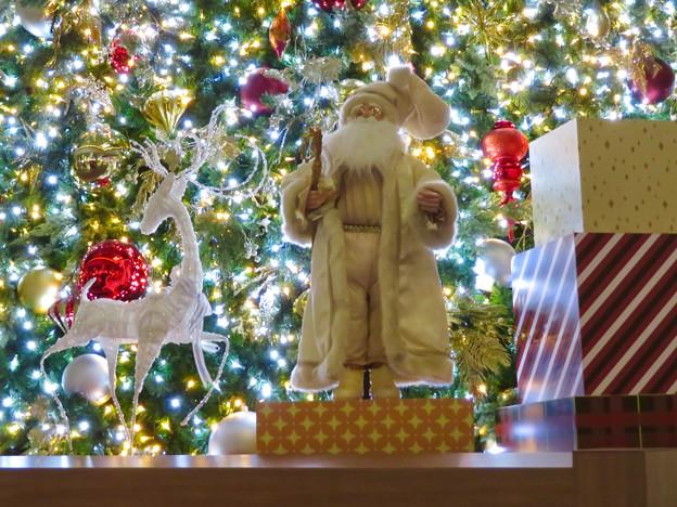 ゲートタワーのクリスマス・イルミネーション 2018 No - 8