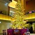 ディズニー映画『くるみ割り人形秘密の王国』とタイアップしたJPタワー名古屋のクリスマスデコレーション - 9