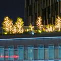 ミッドランドスクエアから見た大名古屋ビルヂング「スカイガーデン」のクリスマス・イルミネーション - 3