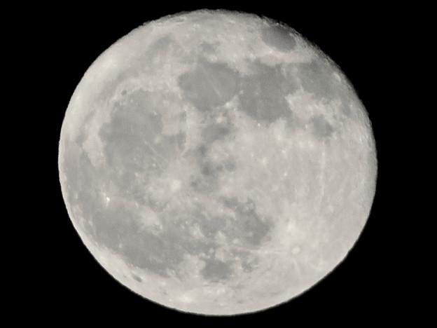 昇ったばかりで煌々と輝く十六夜の月(2018年11月24日) - 4