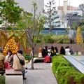 写真: 昼間の大名古屋ビルヂング「スカイガーデン」のクリスマスデコレーション - 2