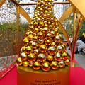 写真: 昼間の大名古屋ビルヂング「スカイガーデン」のクリスマスデコレーション - 8