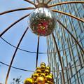 写真: 昼間の大名古屋ビルヂング「スカイガーデン」のクリスマスデコレーション - 9