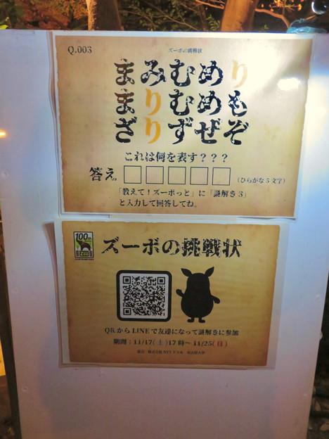 東山動植物園 紅葉ライトアップ 2018 No - 28:ズーボの挑戦状?