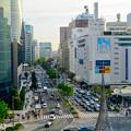 Photos: 大名古屋ビルヂング5階「スカイガーデン」から見た景色 - 2:名駅通