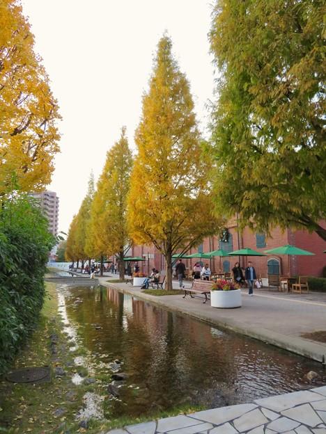 写真: 秋のノリタケの森 - 2