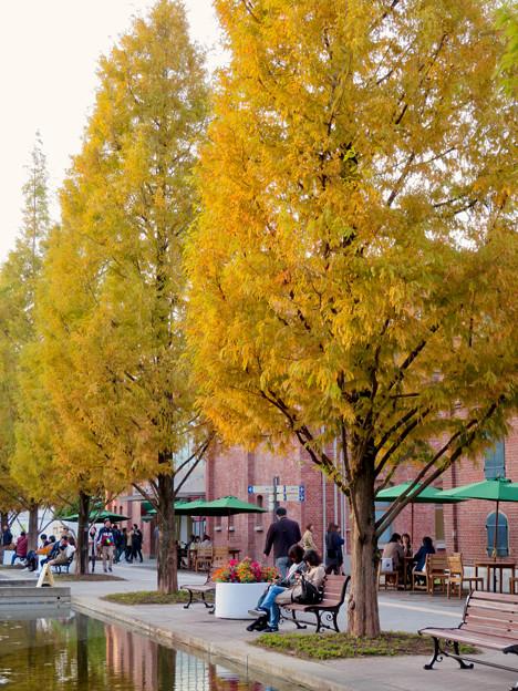 秋のノリタケの森 - 3