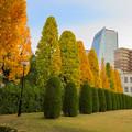 写真: 秋のノリタケの森 - 6