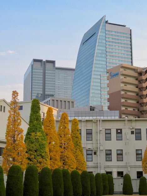 写真: 秋のノリタケの森 - 9