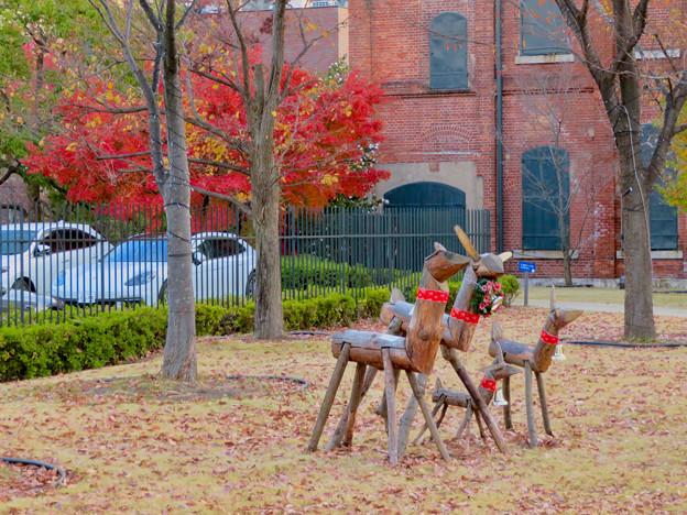 秋のノリタケの森 - 30:紅葉とトナカイ