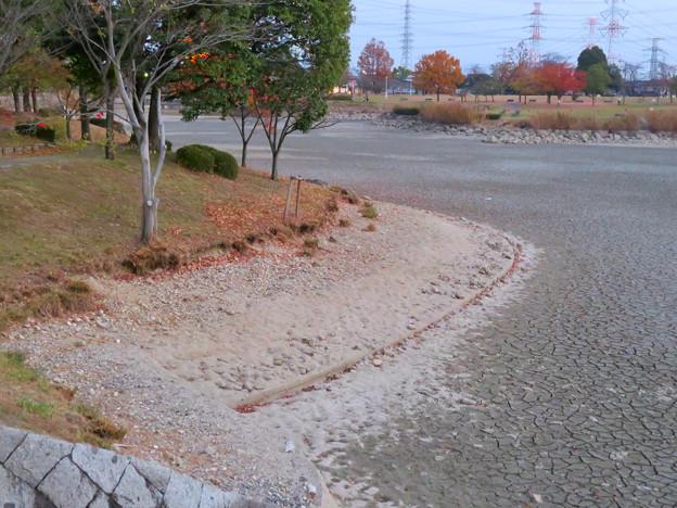 水抜きした状態の秋の落合公園 - 12