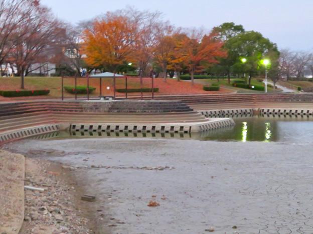 水抜きした状態の秋の落合公園 - 14