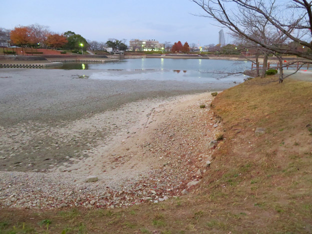水抜きした状態の秋の落合公園 - 15