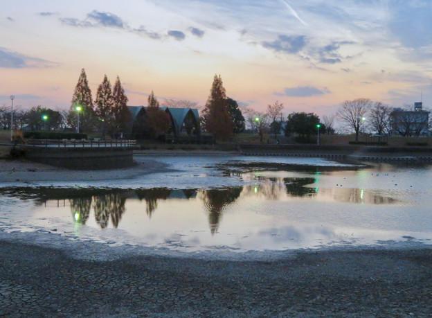 水抜きした状態の秋の落合公園 - 17