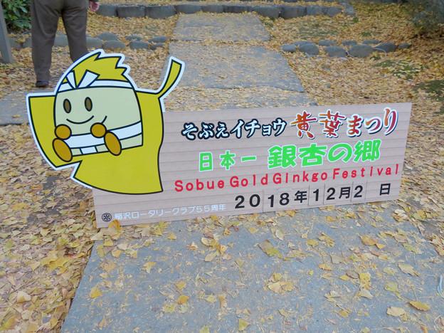 秋の祐専寺 - 6:そぶえイチョウ黄葉まつりの看板