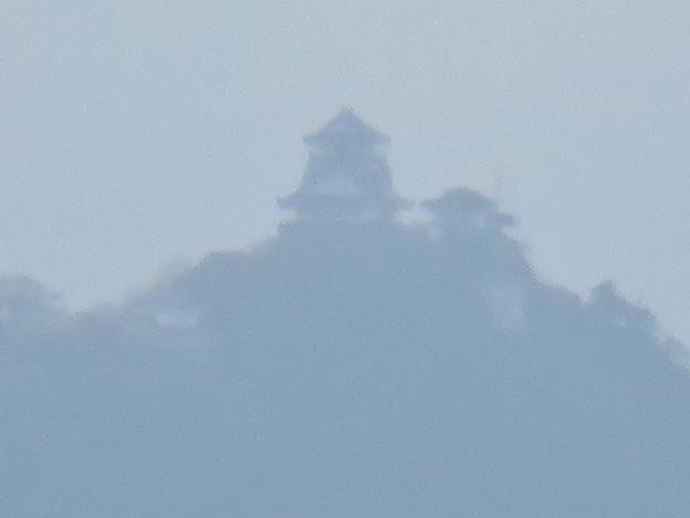 寂光院の展望台から見た景色 - 7:岐阜城