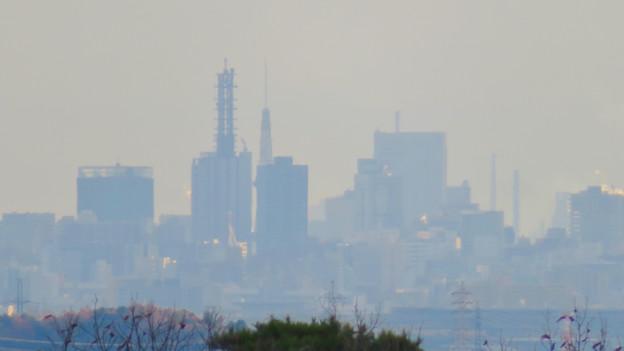 寂光院の展望台から見た景色 - 14:名古屋テレビ塔とNTTドコモ名古屋ビル