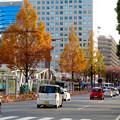 久屋大通沿いの紅葉(2018年12月9日) - 1