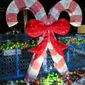 夜の名古屋クリスマスマーケット 2018 No - 6