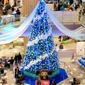 ららぽーと名古屋みなとアクルスのクリスマスツリー 2018 No - 7