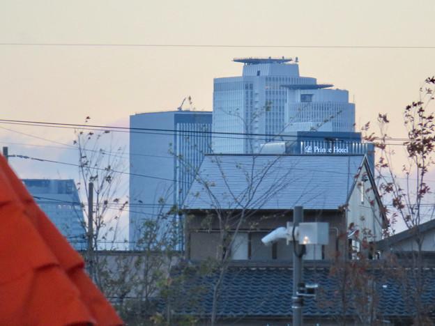 ららぽーと名古屋みなとアクルス西側のみどりの大広場から見えた名駅ビル群 - 2