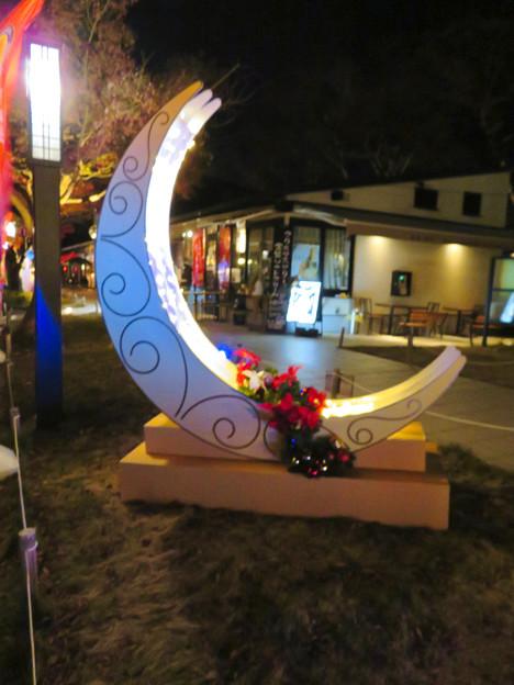 金シャチ横丁のクリスマスデコレーション 2018 No - 4