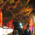 夜の金シャチ横丁「宗春ゾーン」 - 5