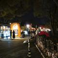 夜の金シャチ横丁「宗春ゾーン」 - 7
