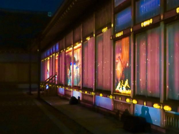 名古屋城×NAKED NIGHT CASTLE OWARI EDO FANTASIA 2018:本丸御殿の巨大横長プロジェクション・マッピング - 16