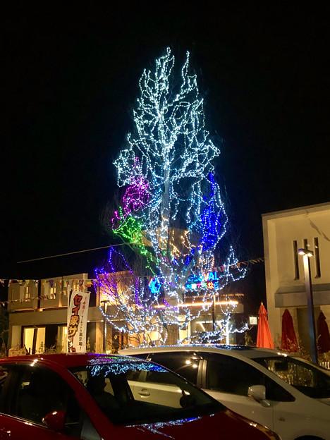 住宅展示場のクリスマスツリー - 2