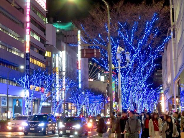 大津通の並木の青いクリスマスイルミネーション