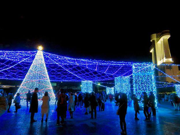 名古屋港ガーデンふ頭:臨港緑園のクリスマスイルミネーション 2018 No - 4