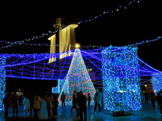 名古屋港ガーデンふ頭:臨港緑園のクリスマスイルミネーション 2018 No - 6