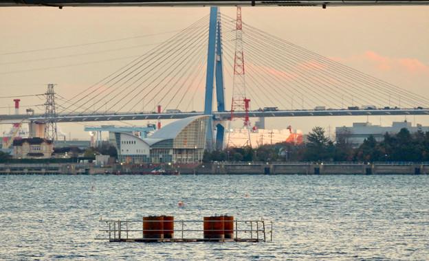 名古屋港ガーデンふ頭:JETTY前から見た対岸の景色 - 2(名港東大橋と名古屋港ワイルドフラワーガーデン「ブルーボネット」)