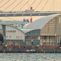 名古屋港ガーデンふ頭:JETTY前から見た対岸の景色 - 3(名古屋港ワイルドフラワーガーデン「ブルーボネット」)