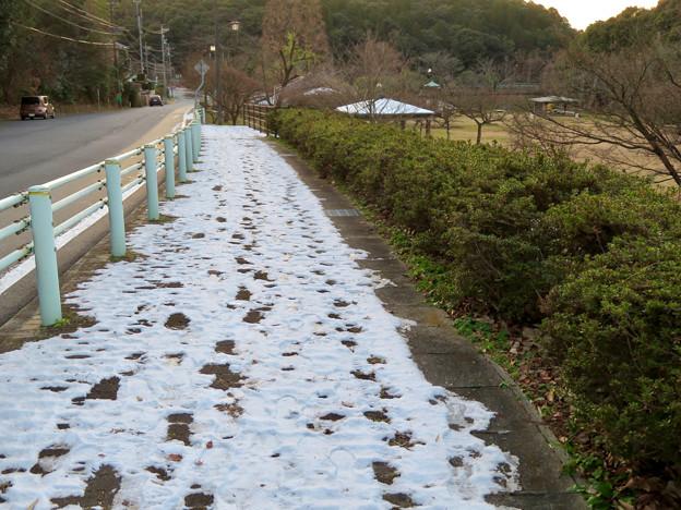 まだ雪が残っていた定光寺公園沿いの歩道 - 3