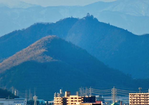 犬山成田山から見た岐阜城・金華山 - 2