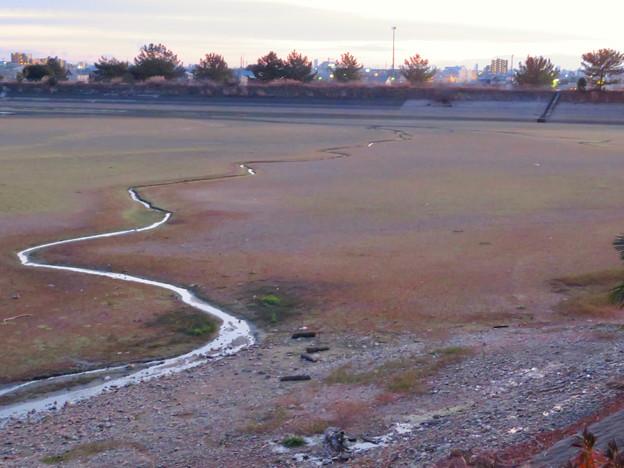 水抜き中の冬の大池 - 4