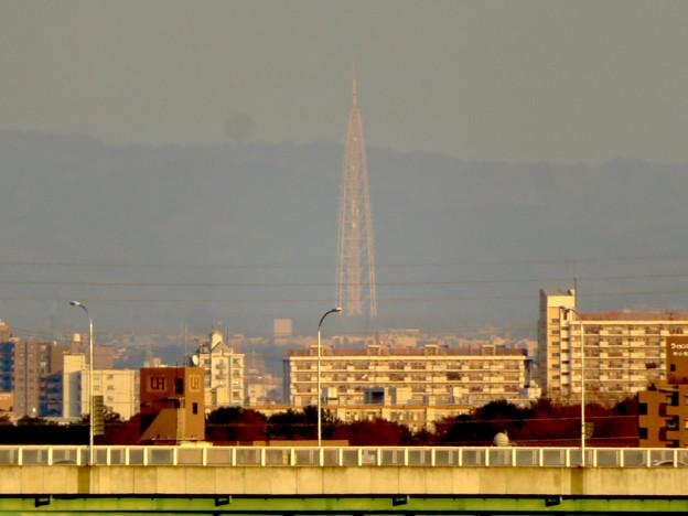 清洲城天守閣から見た景色:瀬戸デジタルタワー - 2