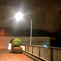 Photos: 桃花台線の桃花台東駅周辺撤去工事(2019年1月8日) - 9