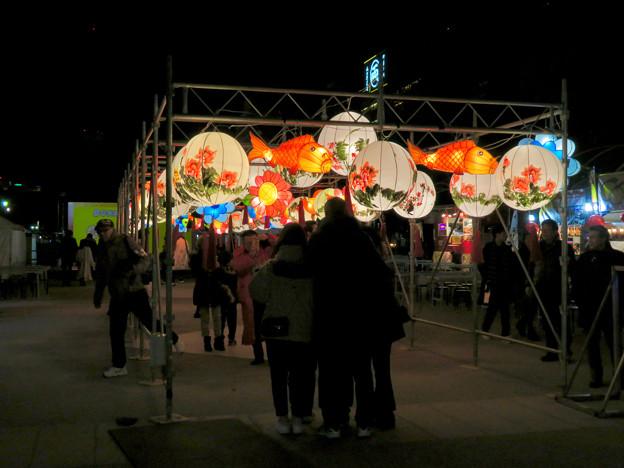 名古屋中国春節祭 2019(夜間)No - 9:カラフルで色んな形をしてた提灯