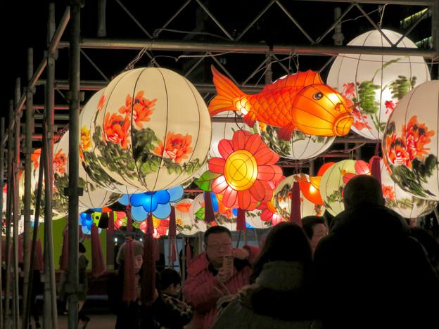 名古屋中国春節祭 2019(夜間)No - 10:鯉の形をした提灯