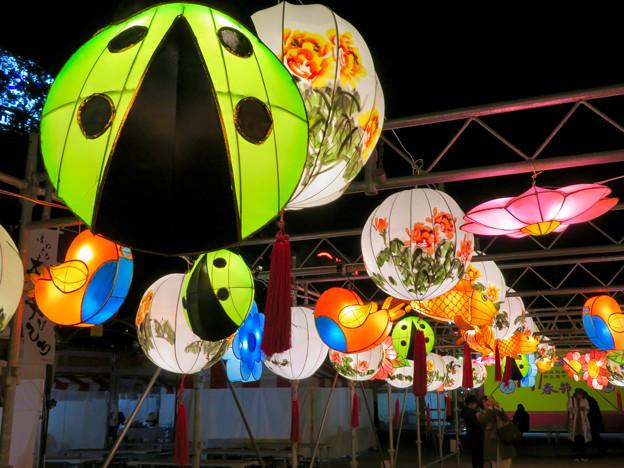 Photos: 名古屋中国春節祭 2019(夜間)No - 11:カラフルで色んな形をした提灯