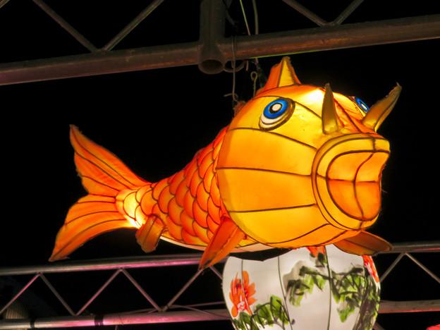 名古屋中国春節祭 2019(夜間)No - 12:鯉の形をした提灯