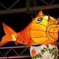 Photos: 名古屋中国春節祭 2019(夜間)No - 12:鯉の形をした提灯