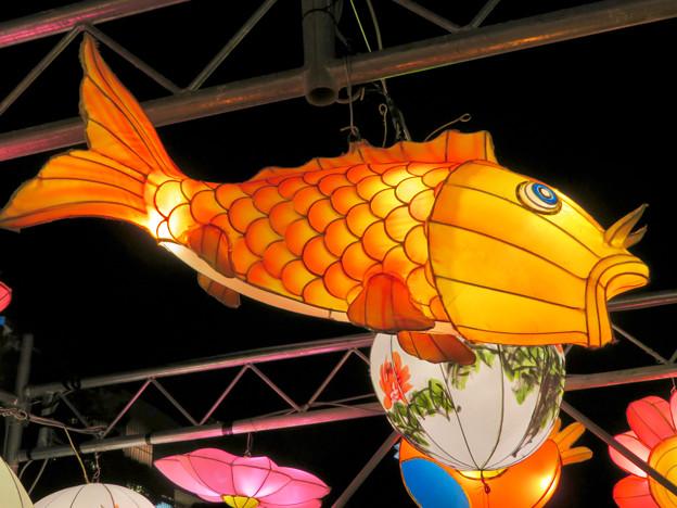 名古屋中国春節祭 2019(夜間)No - 13:鯉の形をした提灯