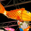 Photos: 名古屋中国春節祭 2019(夜間)No - 13:鯉の形をした提灯