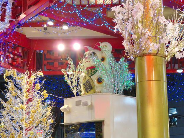 大須商店街:2018-19シーズンの招き猫広場のイルミネーション - 2